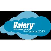 Valery® Administrativo Profesional